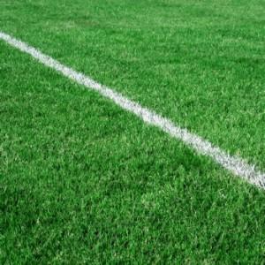 ligne blanche sur une pelouse