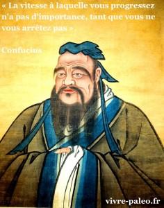 Confucius - La vitesse à laquelle vous progressez n'a pas d'importance tant que vous ne vous arrêtez pas