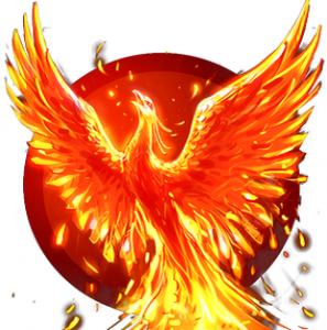 programme-phoenix-pour-renaitre-de-vos-cendres