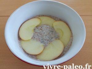 Porridge paléo coco chia pomme cannelle